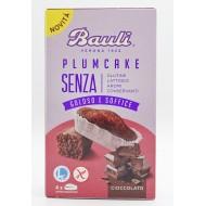 Bauli Plumcake Senza al Cioccolato SENZA LATTOSIO
