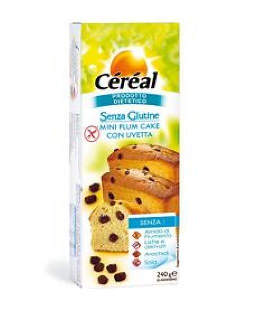 Cereal Plum Cake Uvetta